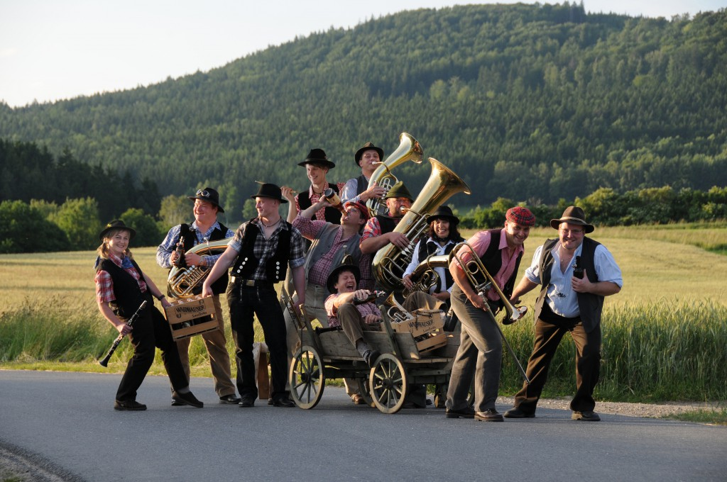 Bild von Gruppe d´ Woihauser Straßenmusikanten