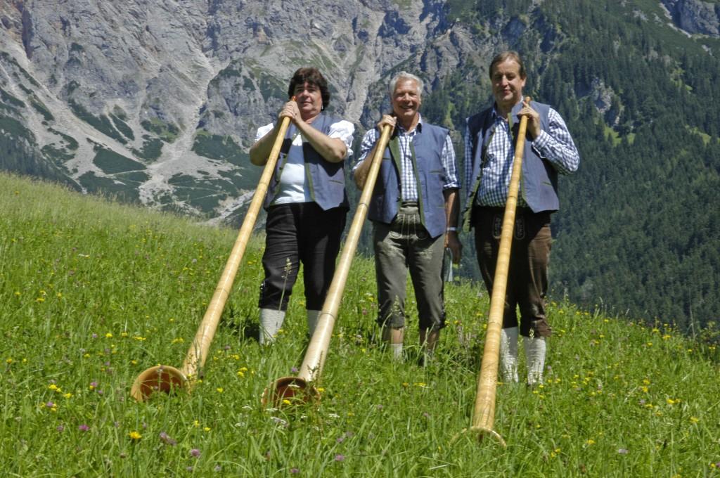 Bild von Gruppe Linzer Alphornblaeser