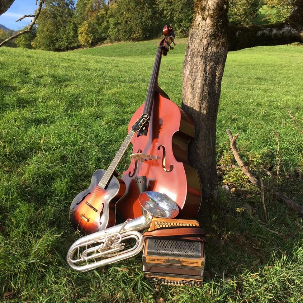 Bild von Gruppe Stoawent Musikanten